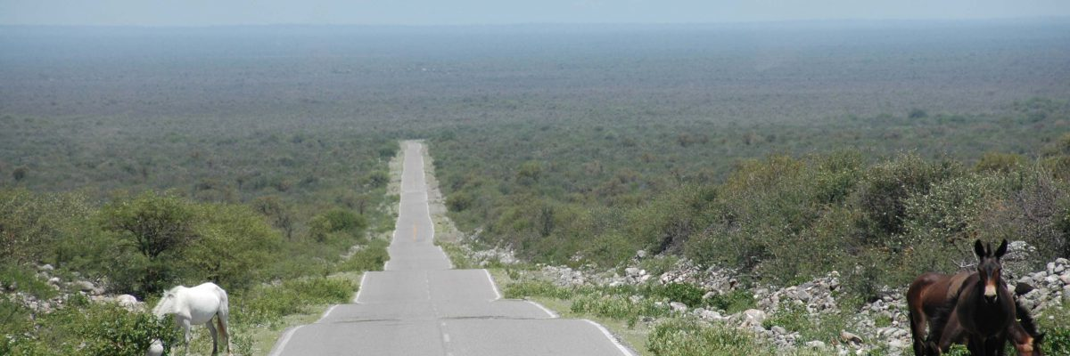 A great and almost isolated road near La Rioja, Argentina